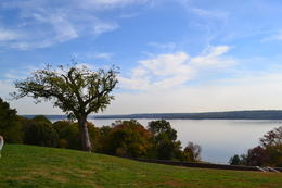 The view across the sweeping lawn over the Potomac River from the front of Mt Vernon , Nicki52 - November 2013