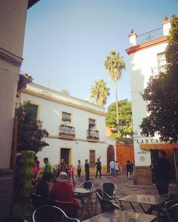 guided tour of seville. , hilly - January 2016