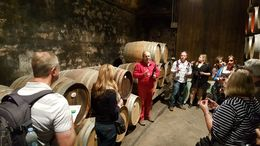 Head of winery explaining wine aging process. Fun Fun : , Josip T - April 2016