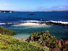 Beautiful view of Crater Bay, Genovesa Island, Galapagos - August 2011