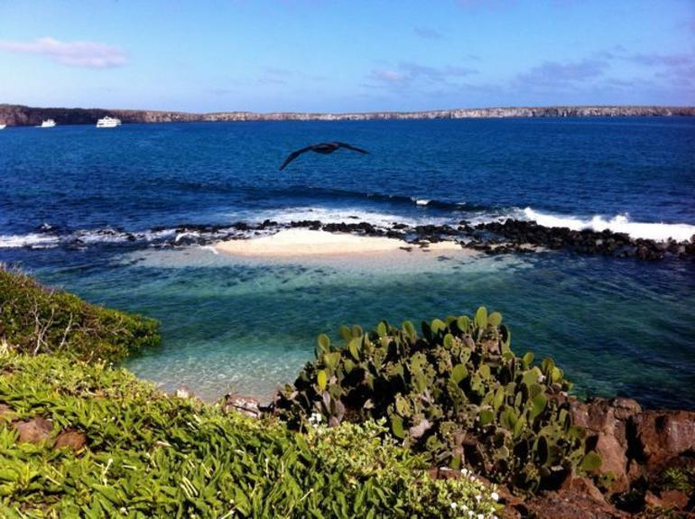 Beautiful view of Crater Bay, Genovesa Island, Galapagos - Galapagos Islands