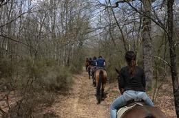 Photo of Florence Horse Riding in Chianti Day Trip from Florence Horse Riding in Tuscany