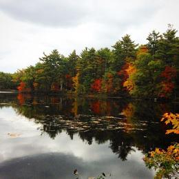 Photo of Boston Fall Foliage Sightseeing Tour from Boston Lake Watatic