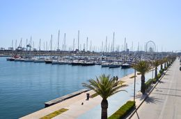 The port of Valencia is a couple of miles distance from the city centre and about a 20 minute bus ride. , David Lally - May 2015