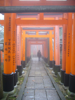 Photo of   Misty Torii at Inari