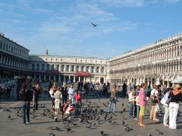 View of Piazza San Marco within - November 2011