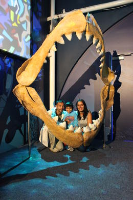 Sydney Sea Life Aquarium, Manita - September 2014