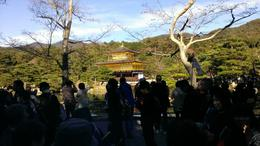 Photo of Kyoto Kyoto Morning Tour: Kyoto Imperial Palace, Golden Pavilion, Nijo Castle Golden Palace among the crowds