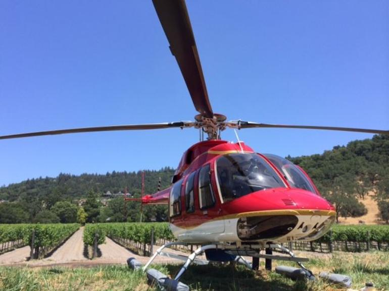 Landing in the vineyards