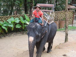 The elephant we rode! , Lauren - December 2013