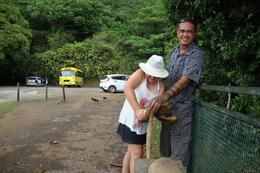 Dana showing our daughter how to husk and open a coconut. , Christieco - August 2014