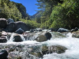 Photo of South Island Milford Track Guided Day Walk from Te Anau Rapids