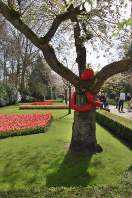 Photo of Amsterdam Keukenhof Gardens and Tulip Fields Tour from Amsterdam Keukenhof