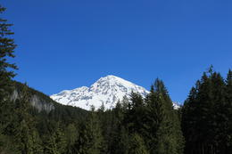 Getting closer to Paradise, Mount Rainier. , loretta.noriega - May 2012