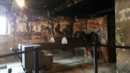 This is where the dead bodies are burned after the gas chamber , Catherine C - November 2013