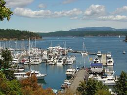 View from Friday Harbor of nice yachts and boats in the bay , Leah - May 2011