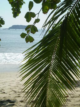 It's not hard to find scenes like these at the private Manuel Antonio National Park beach or along the Pacific coast on the drive to/from the park. , Thomas D - April 2012