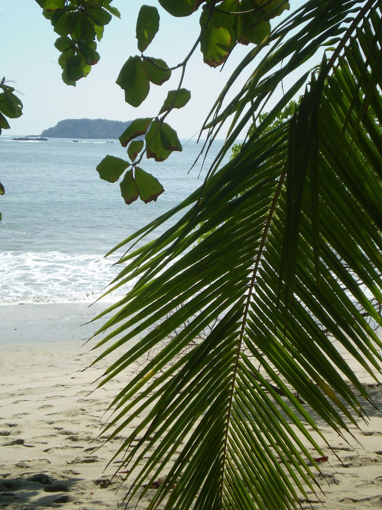 Manuel Antonio Pacific Coast 1 - San Jose