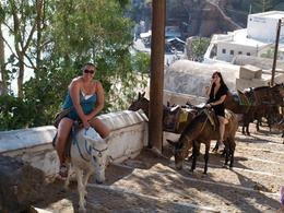 We took donkeys up the steep path from the port to the town on Santorini , clairemc - December 2010