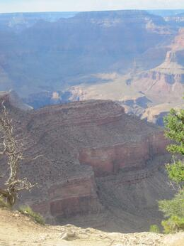 Foto von Las Vegas Grand Canyon – Bustour zum Südrand mit optionalen Upgrades South Grand Canyon