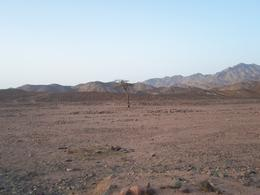 Photo of Hurghada Bedouin BBQ in the Egyptian Desert by 4x4 The view during the desert walk