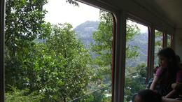 Photo of Rio de Janeiro Corcovado Mountain and Christ Redeemer Statue Half-Day Tour View on the train ride