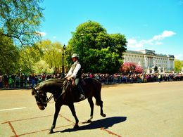 Very large crowd the see the changing of the guard. , Antonio P - May 2015