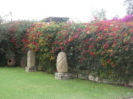 Photo of Lima Private Tour: Larco Museum and National Museum of Archaeology and Anthropology Garden