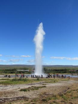 Photo of Reykjavik Whale Watching including Gullfoss and Geysir Express Tour from Reykjavik Geysir