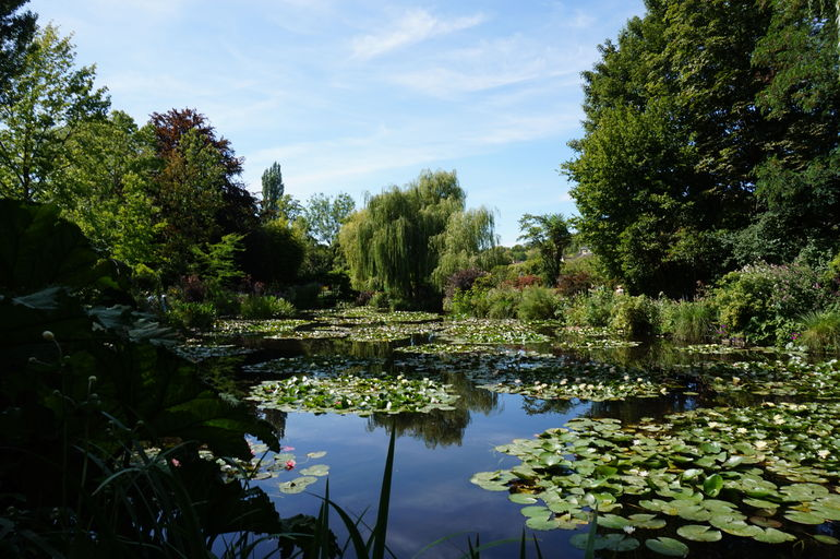 Monet's Japanese garden in Giverny