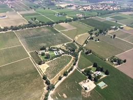 Photo of San Francisco Viator VIP: Napa by Helicopter with Wine Tasting and Lunch Napa