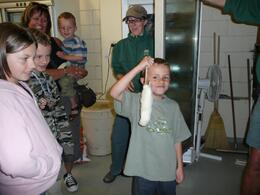 The boys loved the rats and bugs., Iain C - April 2008