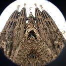 Photo of Barcelona Barcelona Hop-on Hop Off Tour: North to South Route Sagrada Famillia