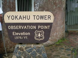 Yokahu Observaton Tower , Ericka M - February 2011
