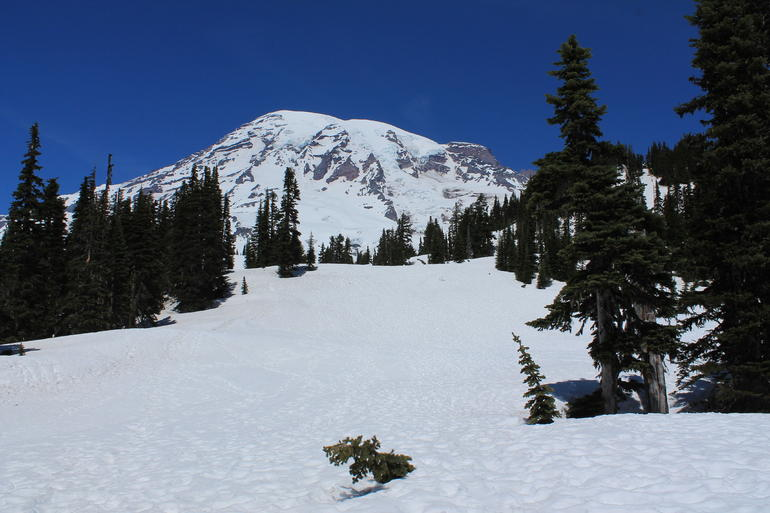 Snowshoeing on Mount Rainier - Seattle