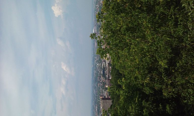 Top of Mount Royal