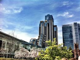 Photo of   Yerba Buena Gardens
