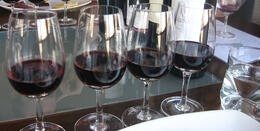 Photo of Buenos Aires Buenos Aires Small-Group Wine Tasting A few reds