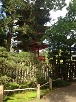 Touring the Golden Gate Park Japanese Tea Gardens. , Leah R - May 2013