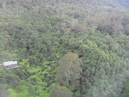 Photo of Sydney Blue Mountains Nature and Wildlife Day Tour from Sydney SAM_5308