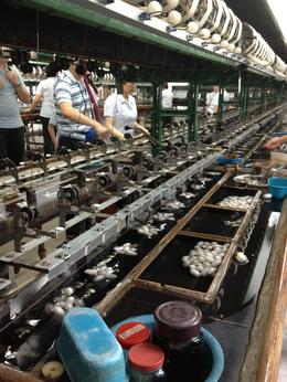 Photo of Shanghai Suzhou and Zhouzhuang Water Village Day Trip from Shanghai Silk Factory