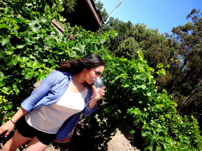 Tasting in the vineyard