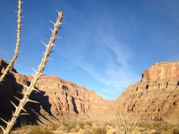 Photo of Las Vegas Grand Canyon West Rim Deluxe Sunset Helicopter Tour Beautiful landscape where we landed