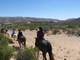 Photo of Las Vegas Morning Maverick Horseback Ride with Breakfast on the trail