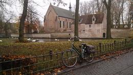 Photo of Amsterdam Bruges Day Trip from Amsterdam Picturesque Bruges~