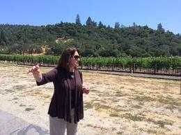 Photo of San Francisco Viator VIP: Napa by Helicopter with Wine Tasting and Lunch Private tour