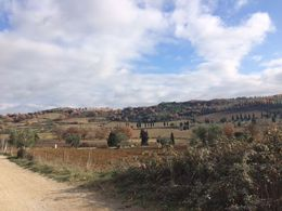 View of the winery , Kareem H - January 2016