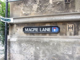 Magpie Lane - Oxford , Lori N - September 2015
