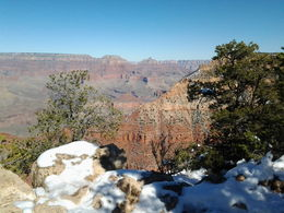 Photo of Las Vegas Grand Canyon South Rim Bus Tour with Optional Upgrades Snow at Grand Canyon