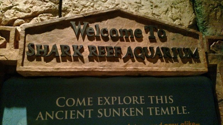Welcome sign to the reef!